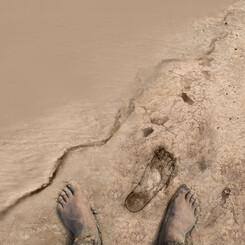 SWCA Footprint illustration