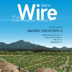 Wire Vol 17 No 1 Cover Image