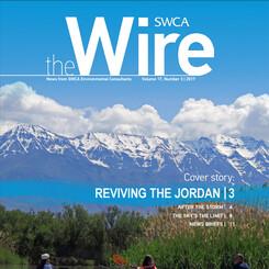The wire magazine cover