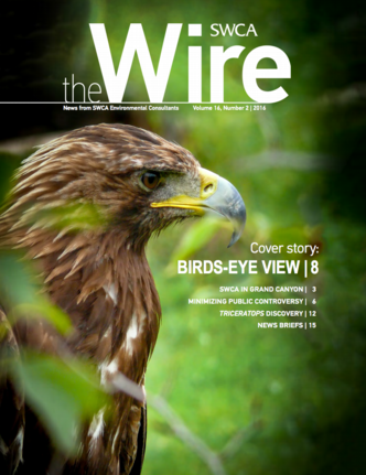 Wire Vol 16 No 2 cover