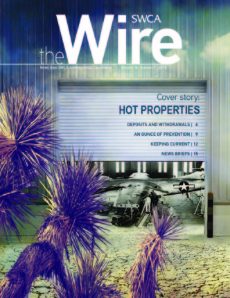 The Wire cover image thumbnail