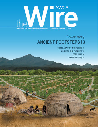 Wire Vol 17 No 1 Cover Image
